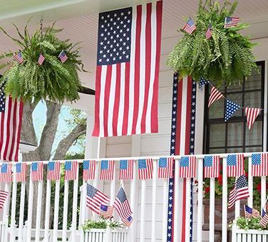 Patriotic-Veterans Day Theme Party